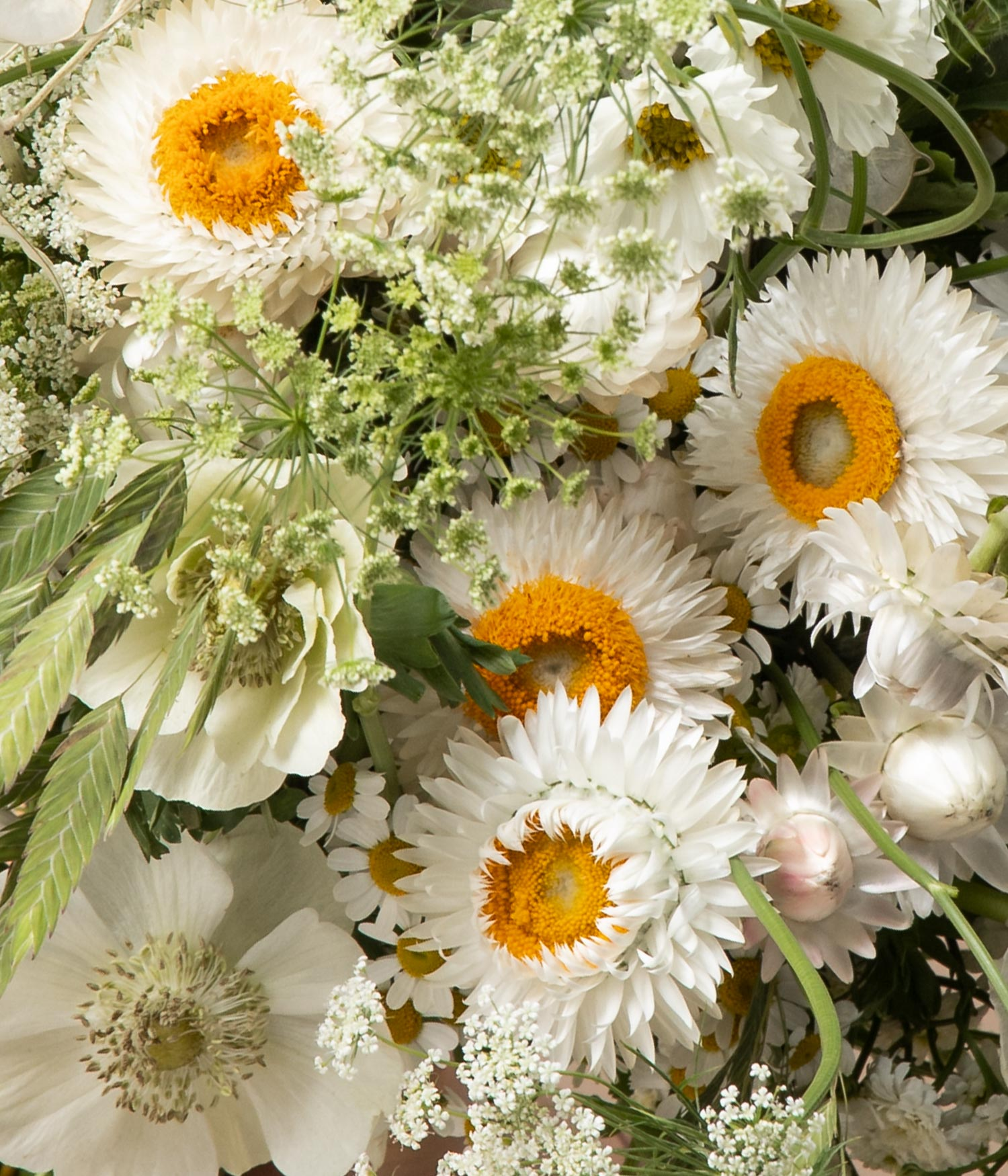 Detail of Chantilly anemone flower bouquet by flannel flowers